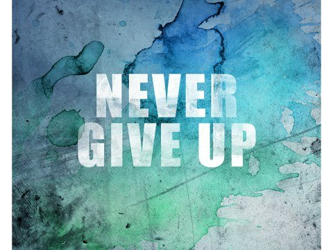 Never Give Up Bild