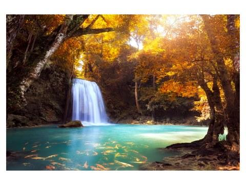 Wasserfall Bild